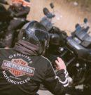 EU vs. Harley-Davidson-Motorräder Wenn zwei sich streiten, trifft's den Dritten